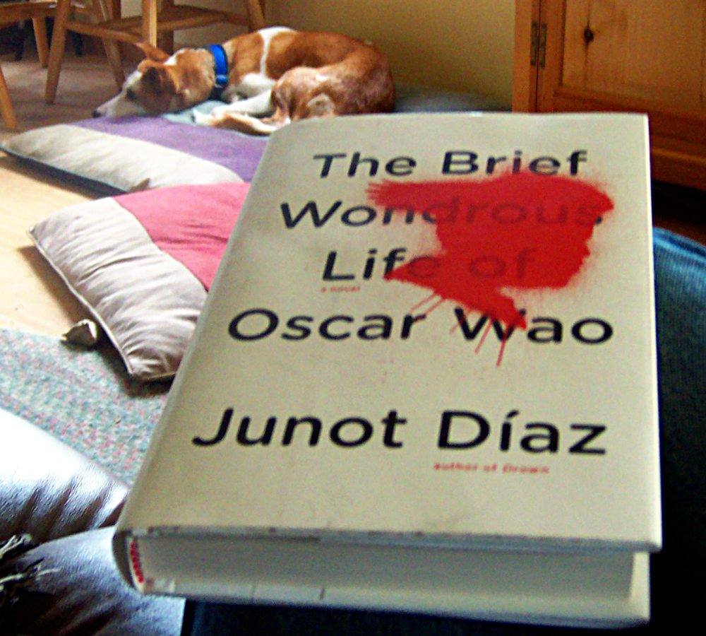 the brief wondrous life of wao The purpose of my thesis is to analyze junot díaz's the brief wondrous life of oscar wao and evaluate the role literature plays within the larger context of the relationship among the.