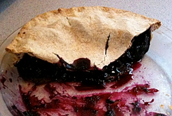 Blueberry / cranberry pie