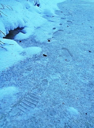 Footprints frozen in the Creek